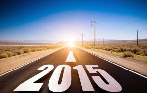 bonne-année-2015