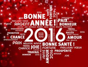 Tous mes meilleur vœux pour cette nouvelle année